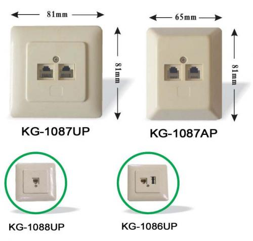 Modular & TAE Wall Socket